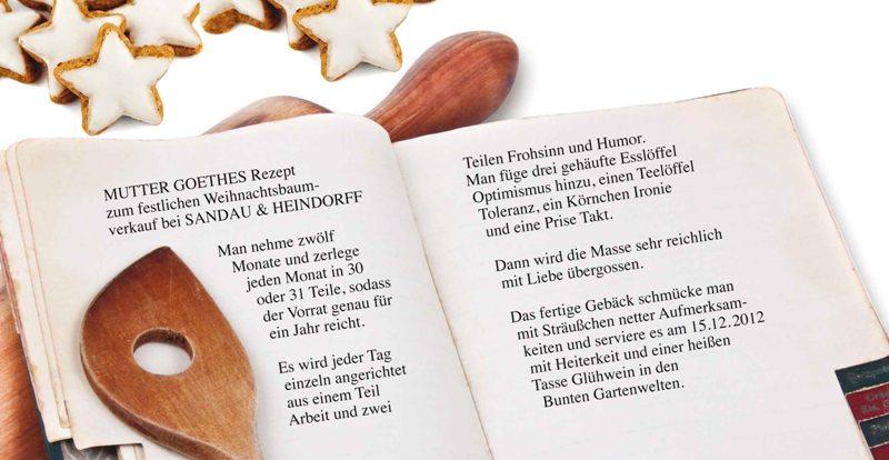Weihnachtsbaumverkauf 2012